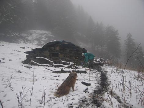 Зима в Индии