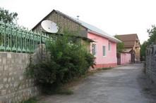 Узбекистан дачи