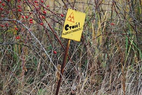 Chernobyl_74