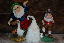 Gnomes_221
