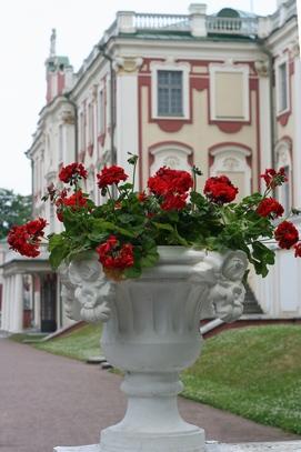 Tallinn_one_day24