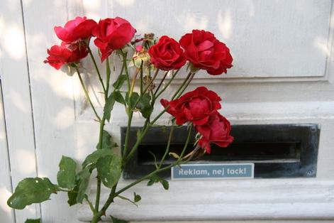 Sweden_2011_1_050