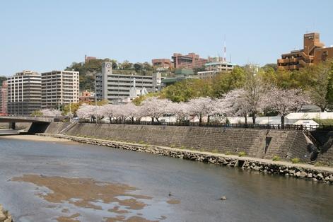 Kagoshima10