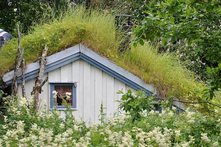 Norge_roof_5_221