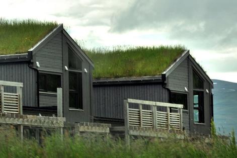 Norvegian_roof_2
