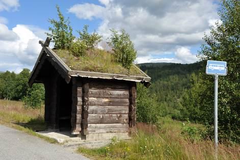 Norvegian_roof_4