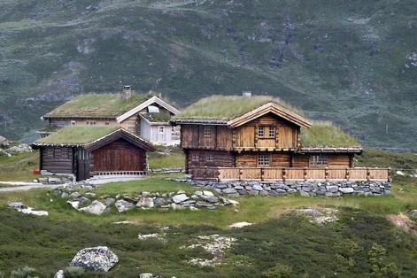 Norvegian_roof_5