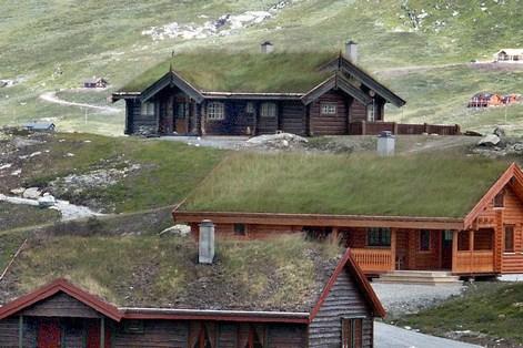 Norvegian_roof_7