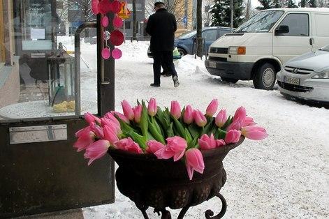 Lahti_winter_14