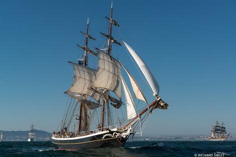 morgenster parade of sail richard sibley