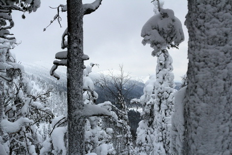 Lappland Finnland 4